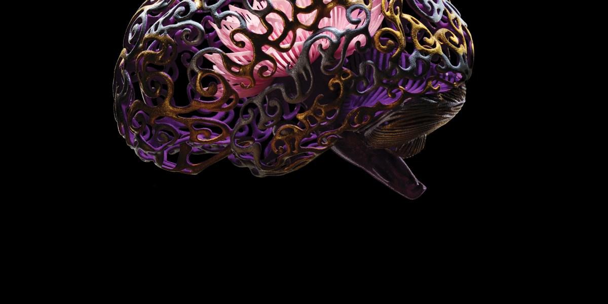 Neuroscience's New Toolbox