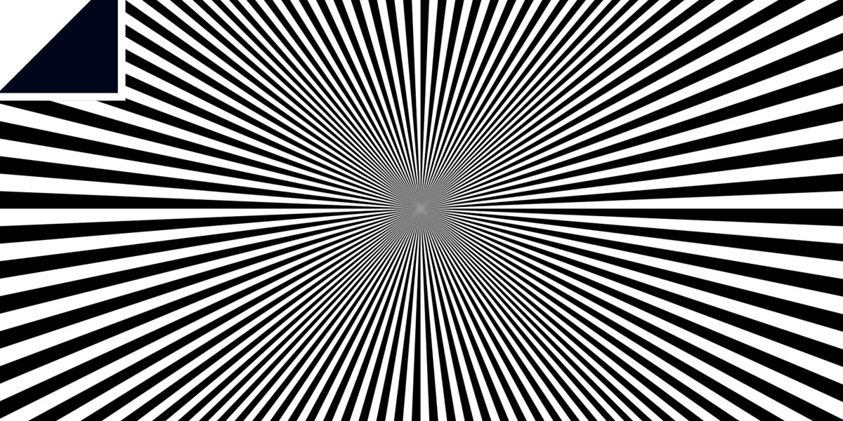 Neural networks don't understand what optical illusions are