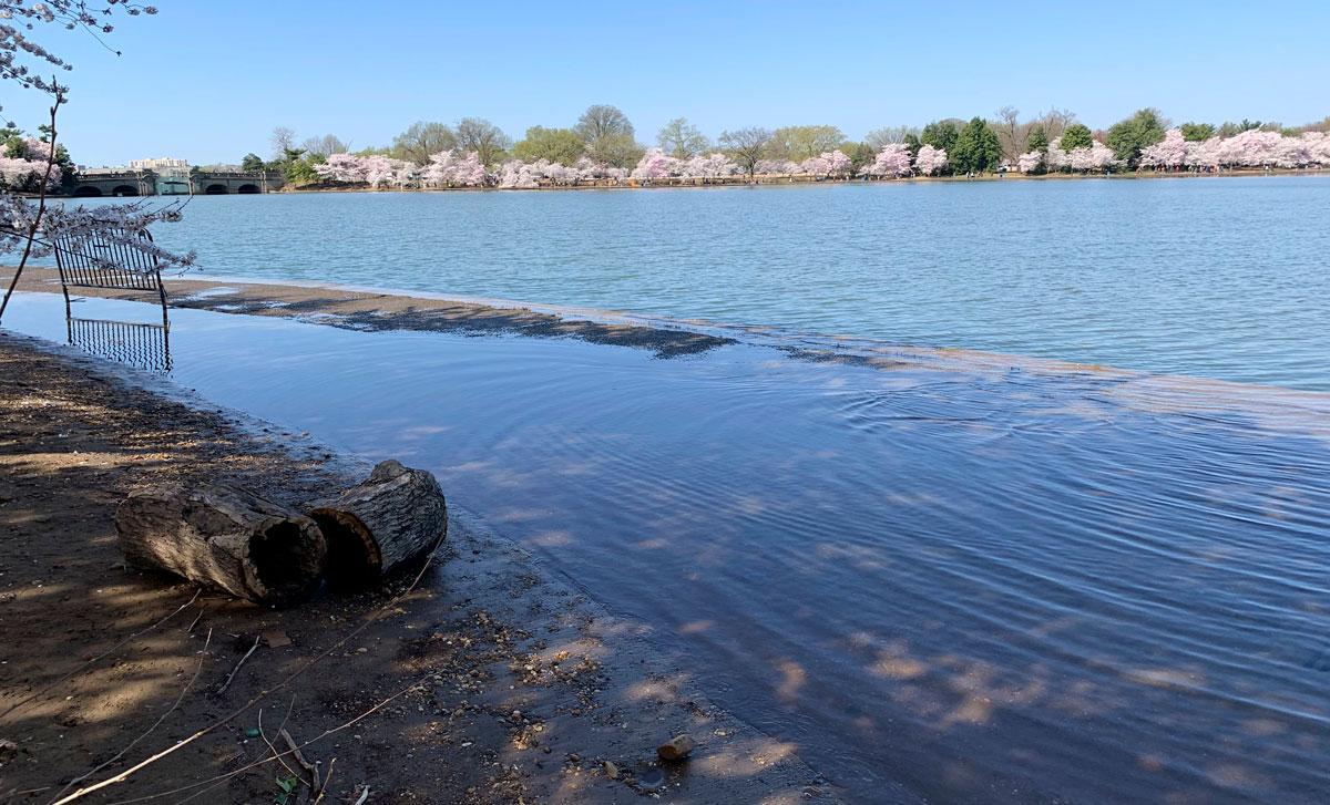 Rising water in Washington, DC