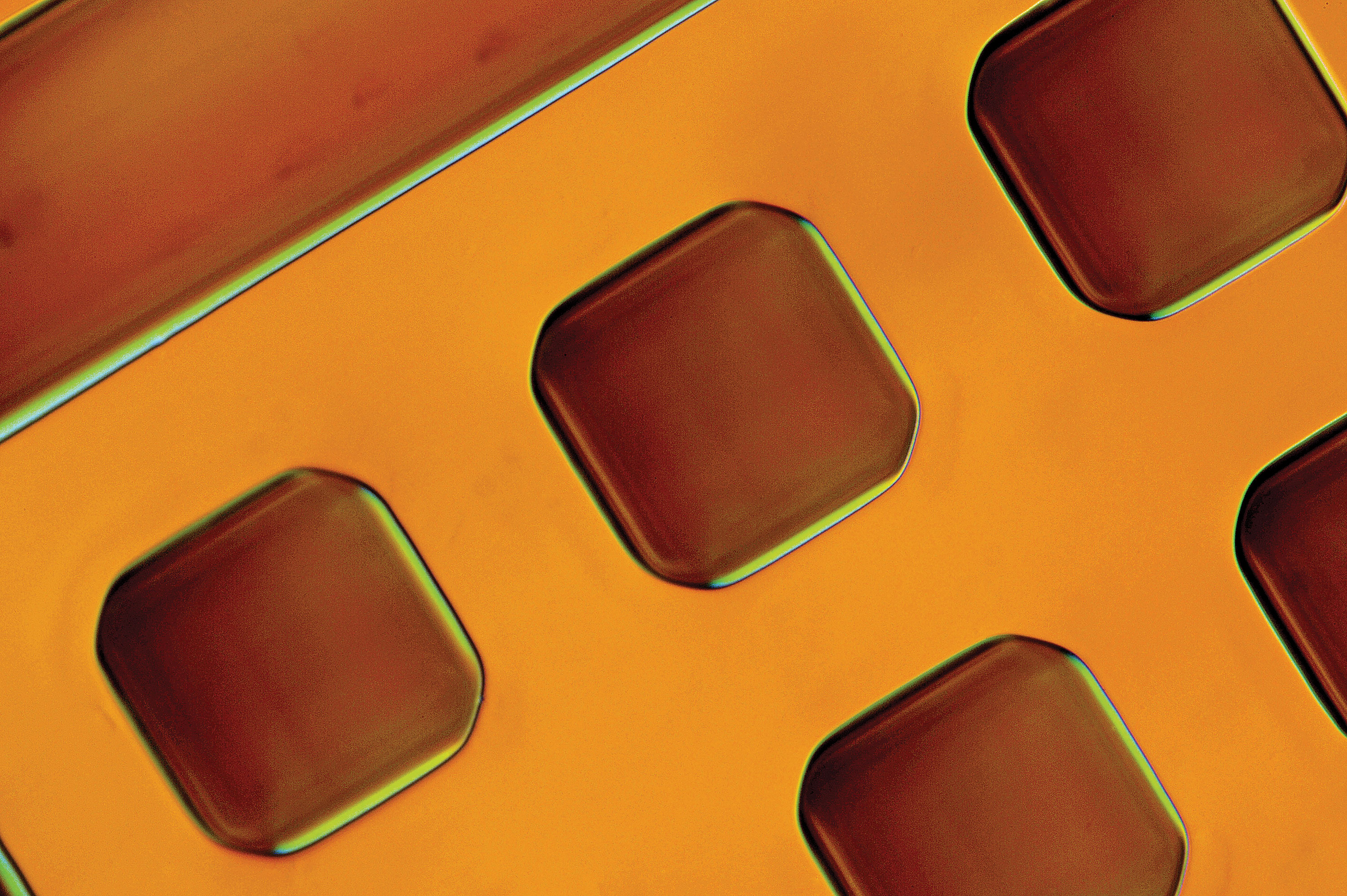 Image of magnified orange grid