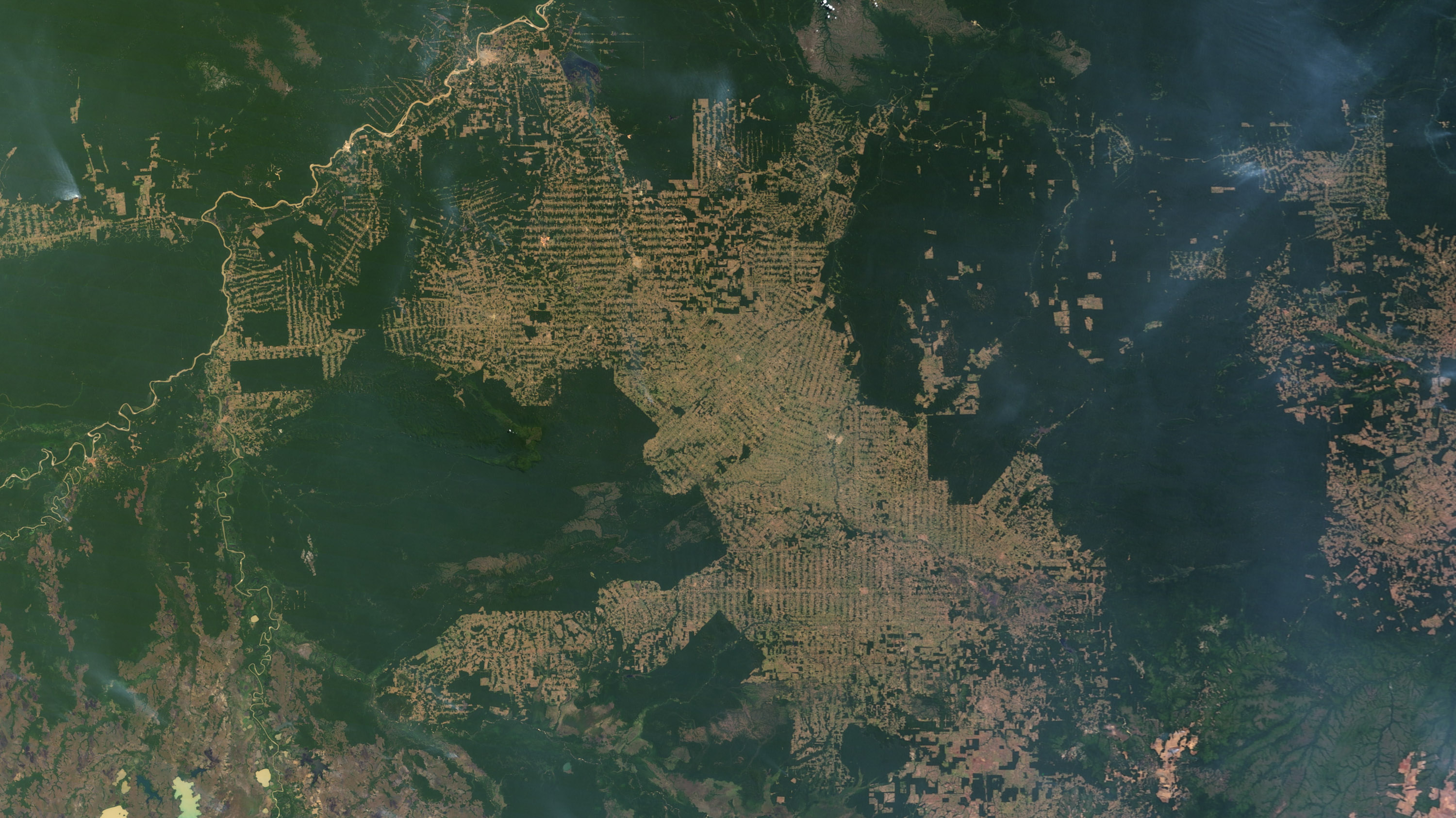 Deforestation in the state of Rondônia, in western Brazil.