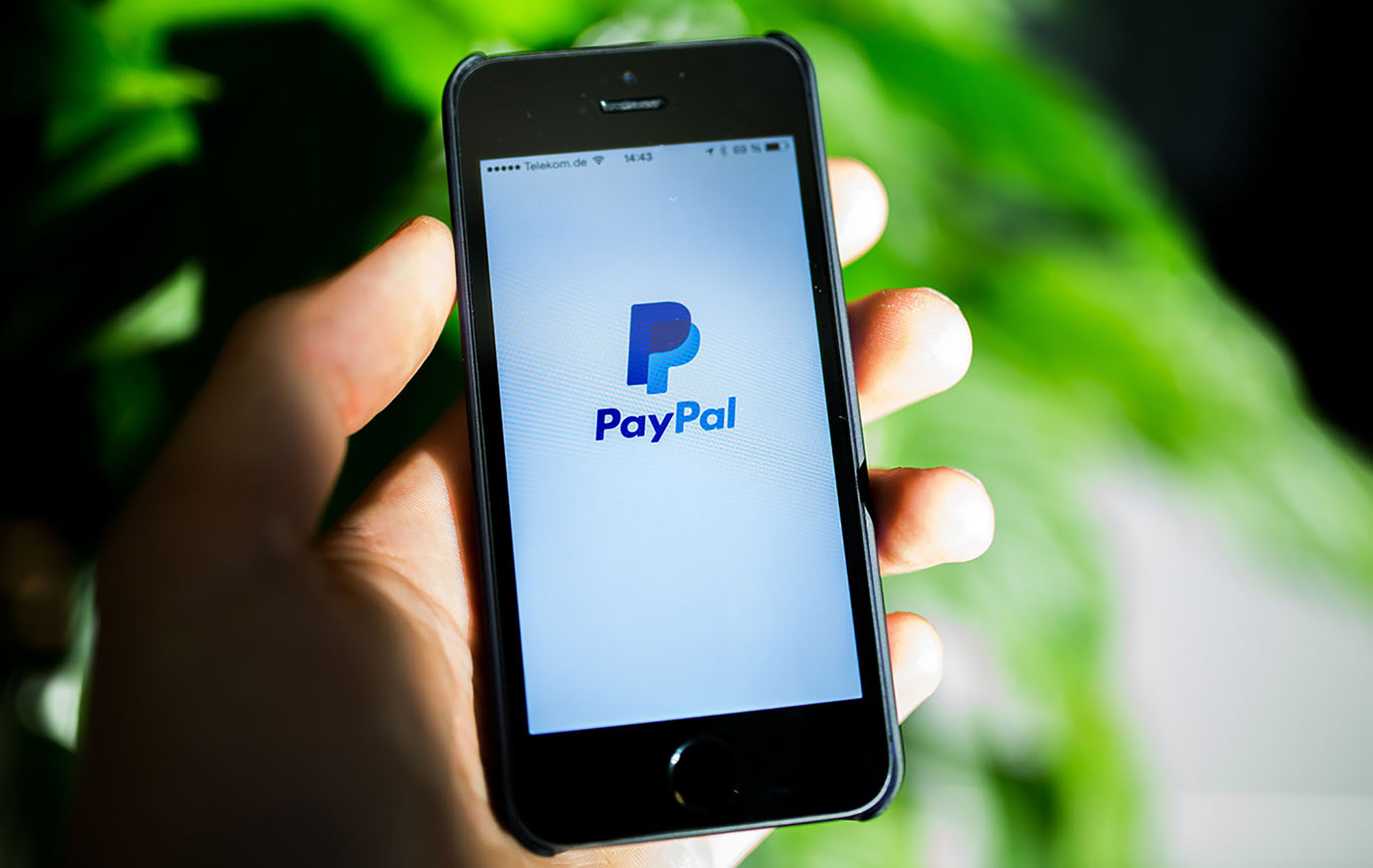 Someone's hand holding a phone with the PayPal app loaded.