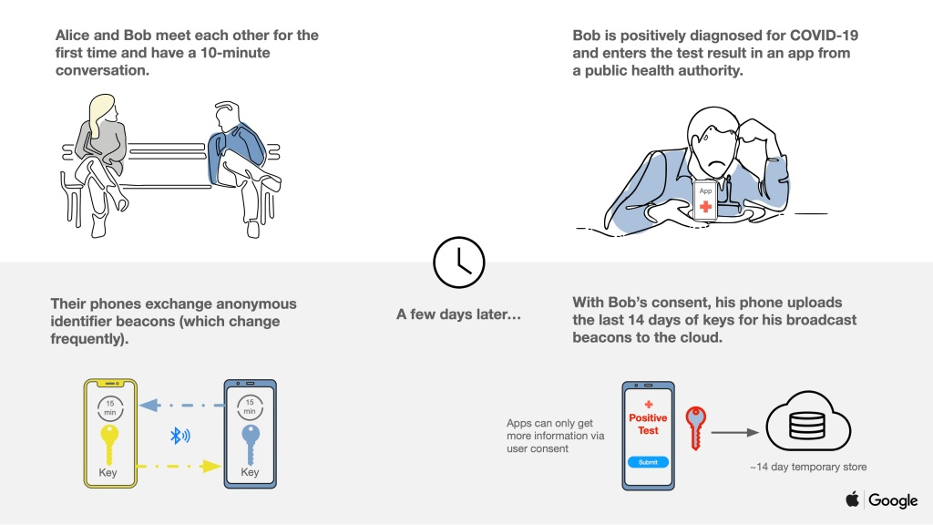 Apple y Google rastreo móviles coronavirus ➤