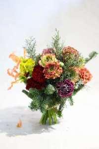 An arrangement of pon pon flowers.