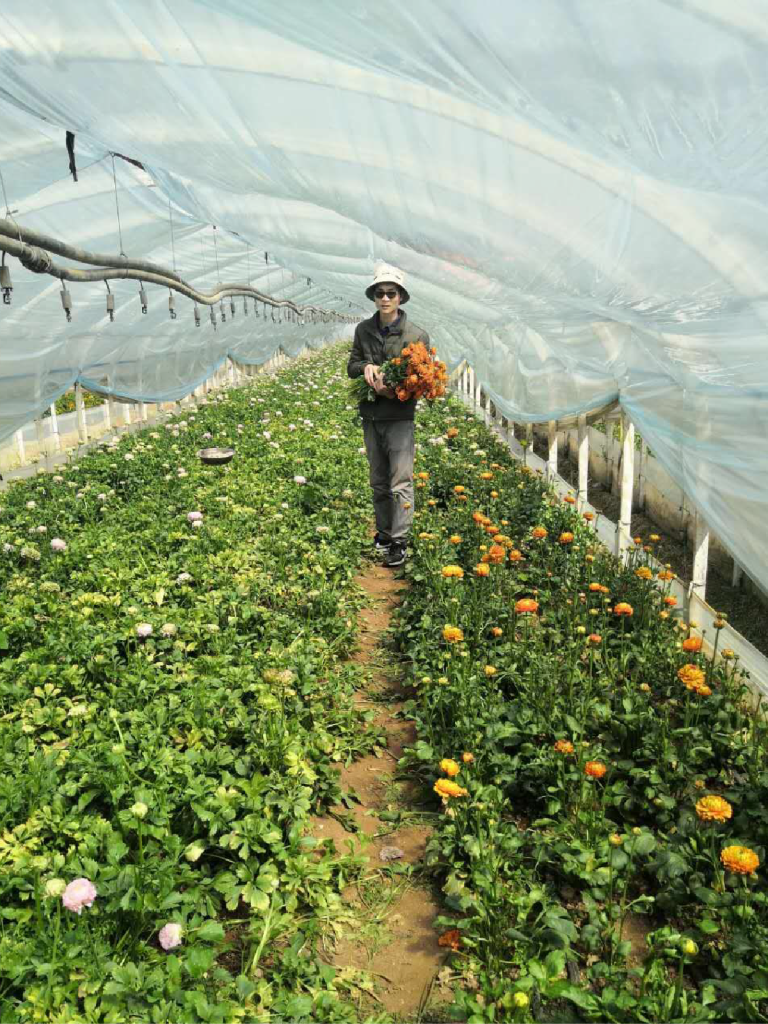 Li Jinxing in his flower farm.