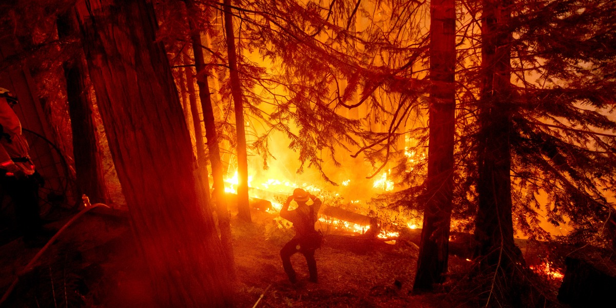 Suppressing fires has failed. Here's what California needs to do instead.
