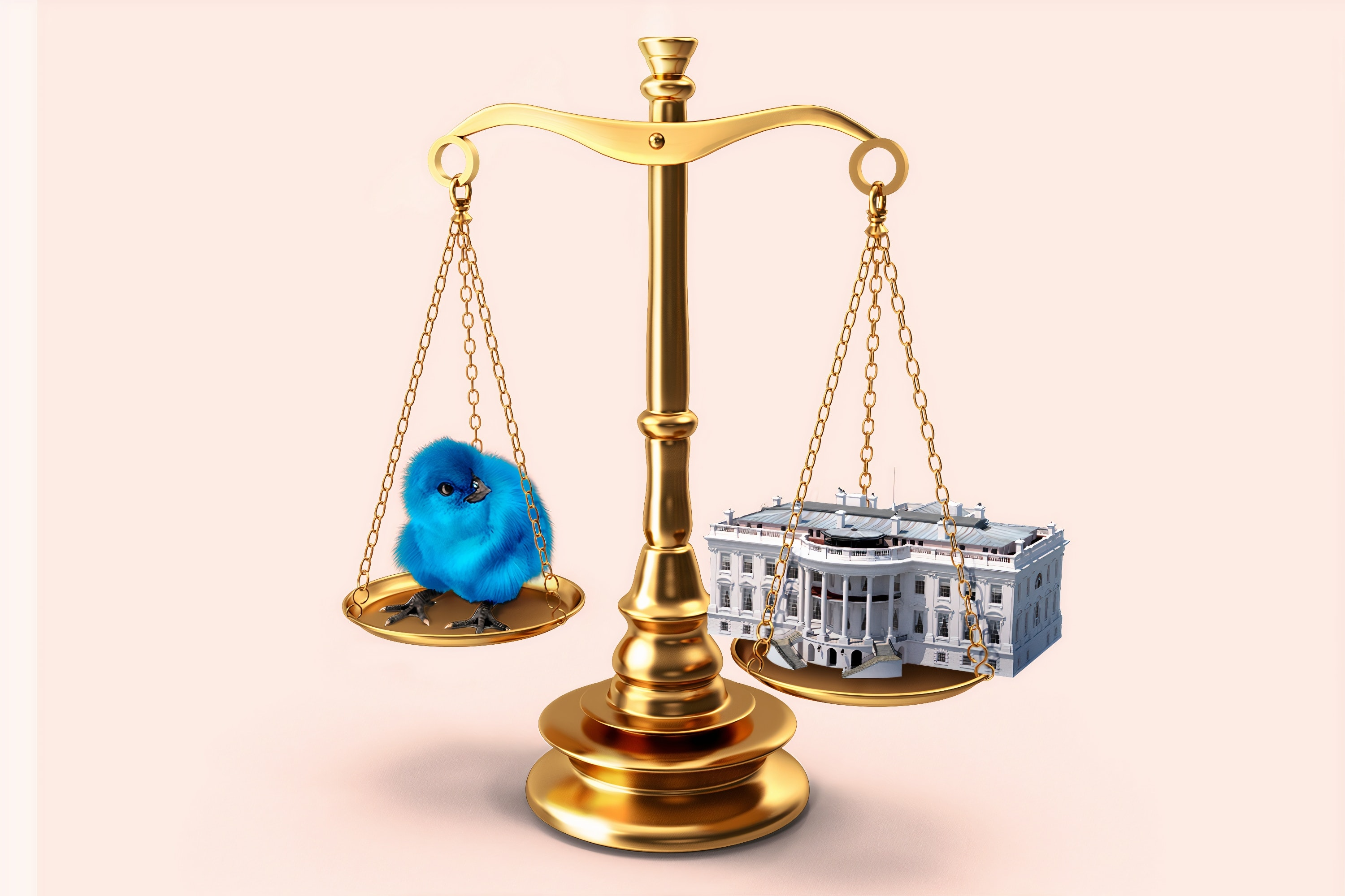 A blue bird balances on a set of scales across from the White House.