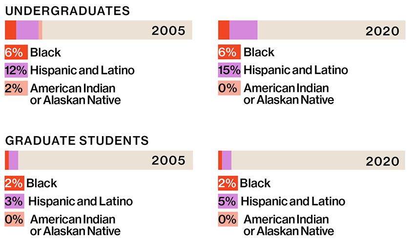 student body diversity chart