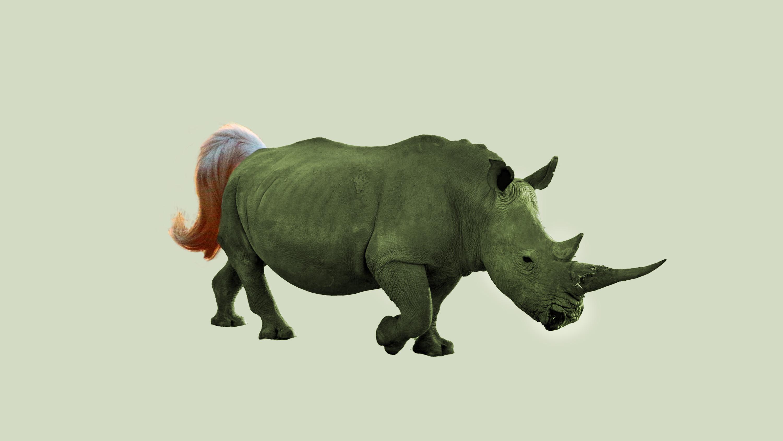 Rhinoceros, un cruce entre un rinoceronte y un unicornio