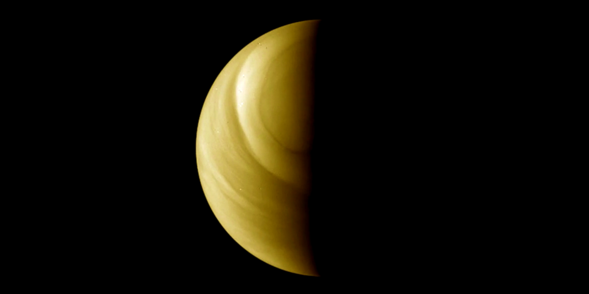 Not finding life on Venus would be disappointing. But it's good science at work.