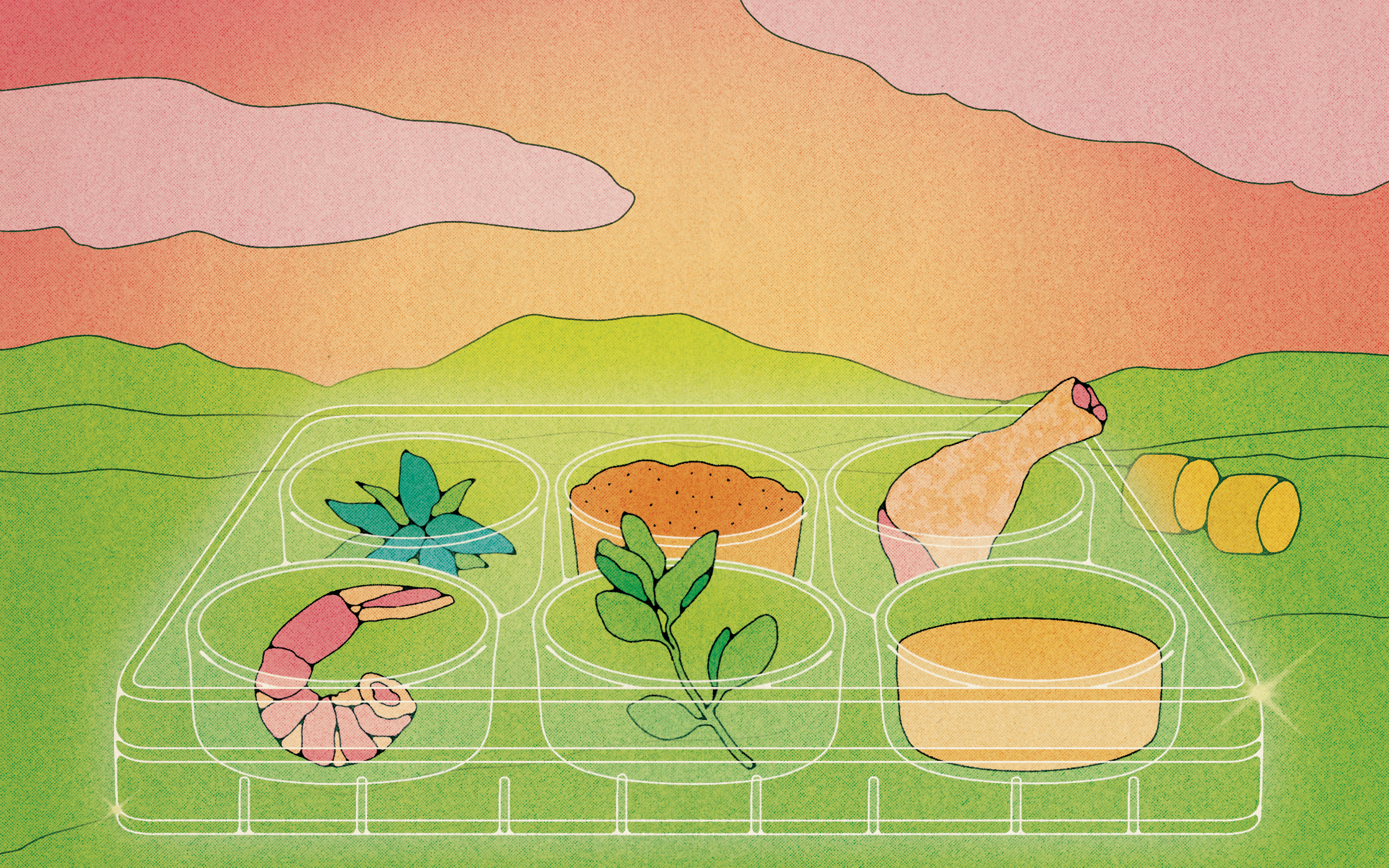 petri dishes with meat and plants