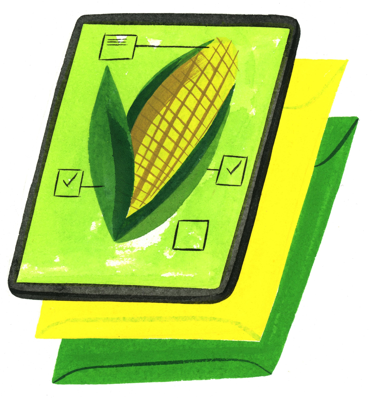 corn census