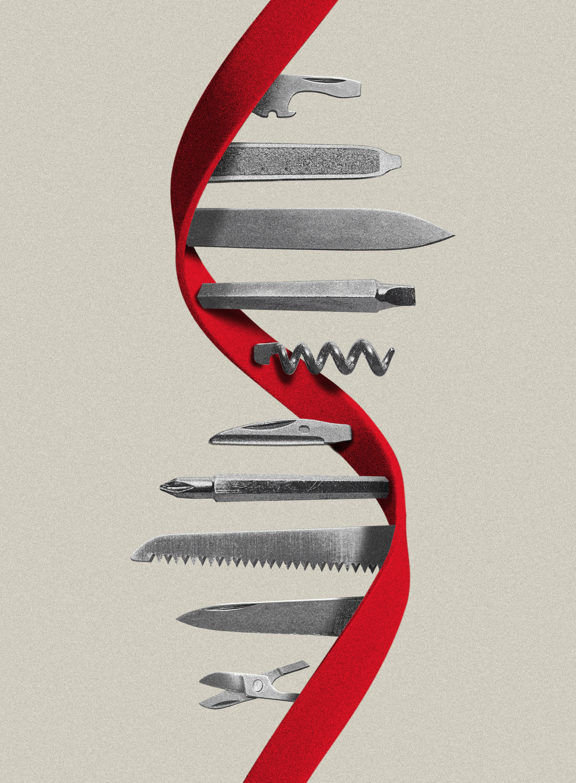 gene vaccine illo