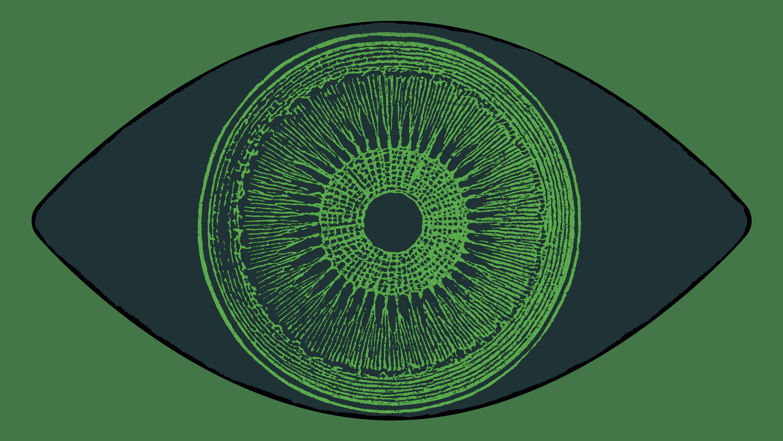 algae eye concept