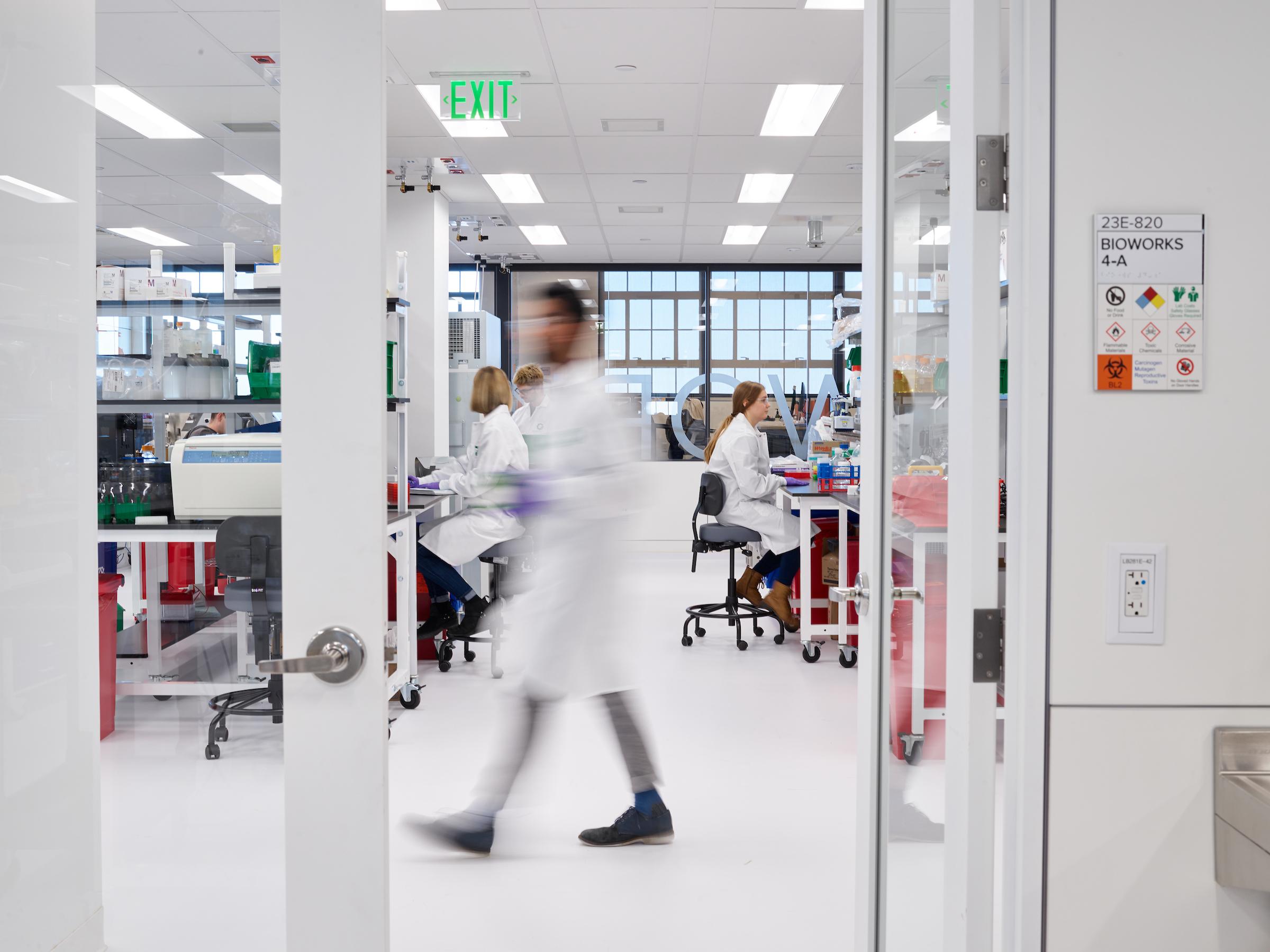 photograph showing a lab at Gingko Bioworks