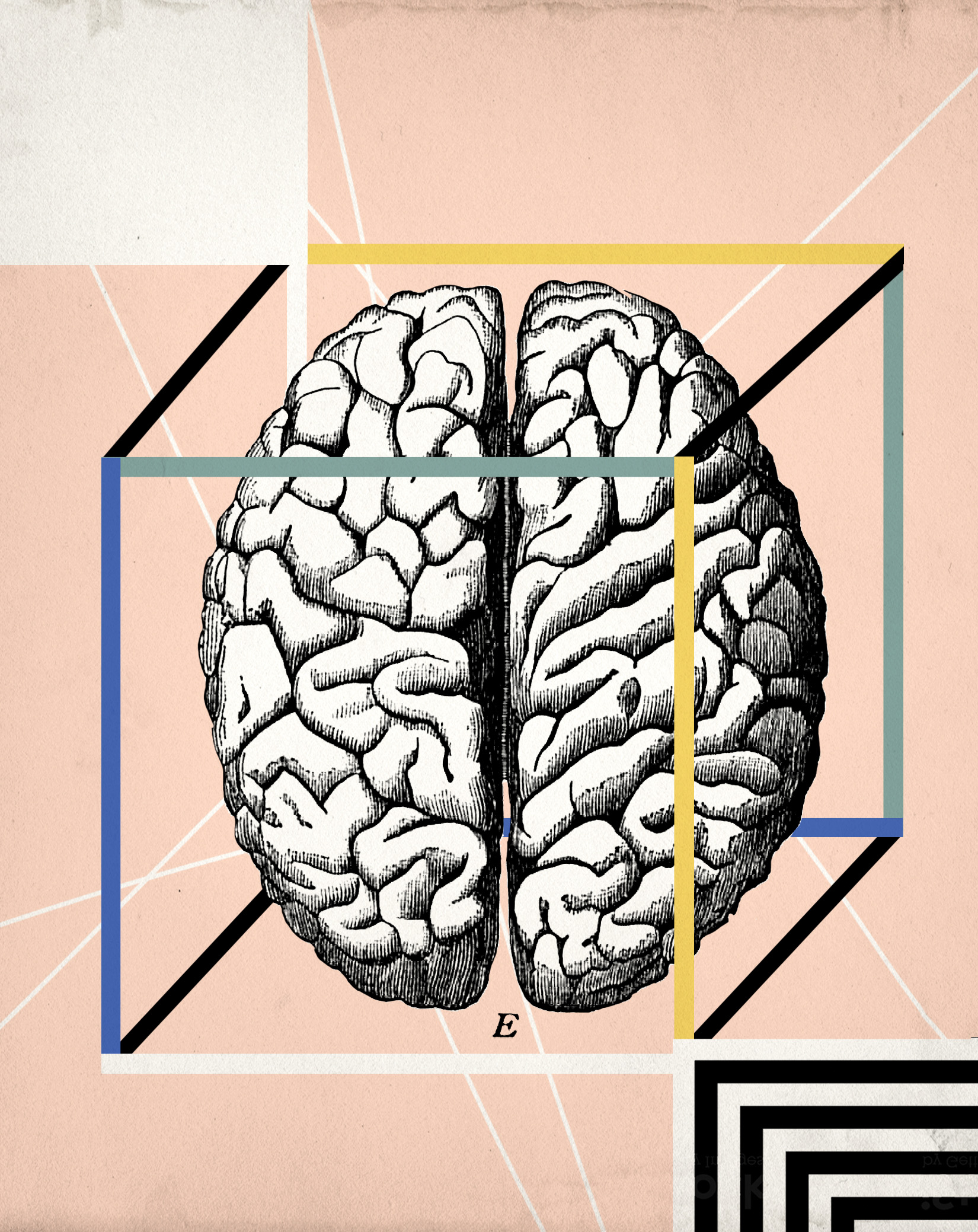 science brain concept