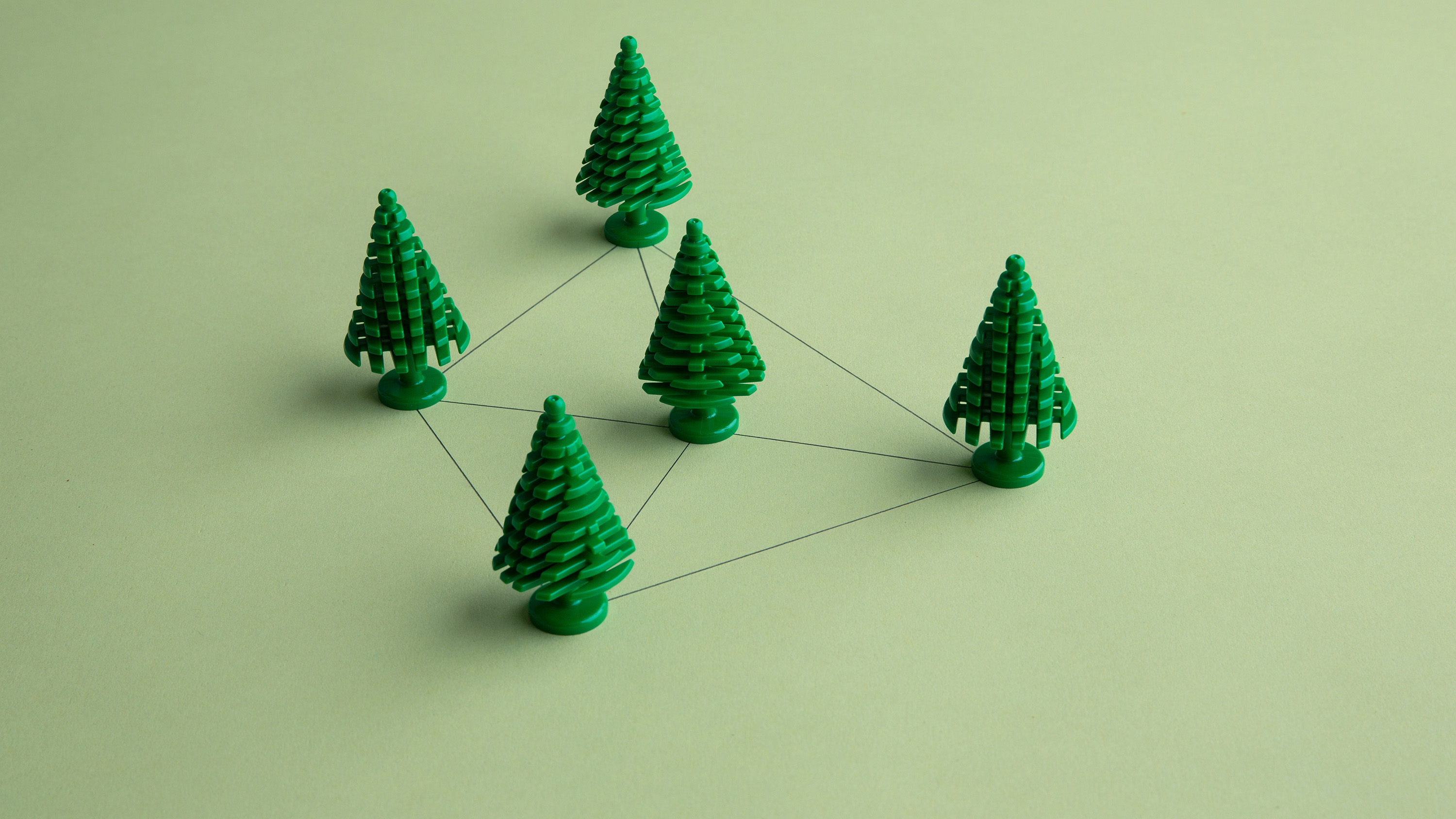 The Steiner tree problem:  Connect a set of points with line segments of minimum total length.
